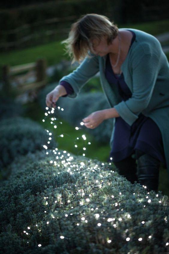 posiziona le lucine proprio sulle piante per illuminare il tuo cortile e farlo sembrare magico allo stesso tempo