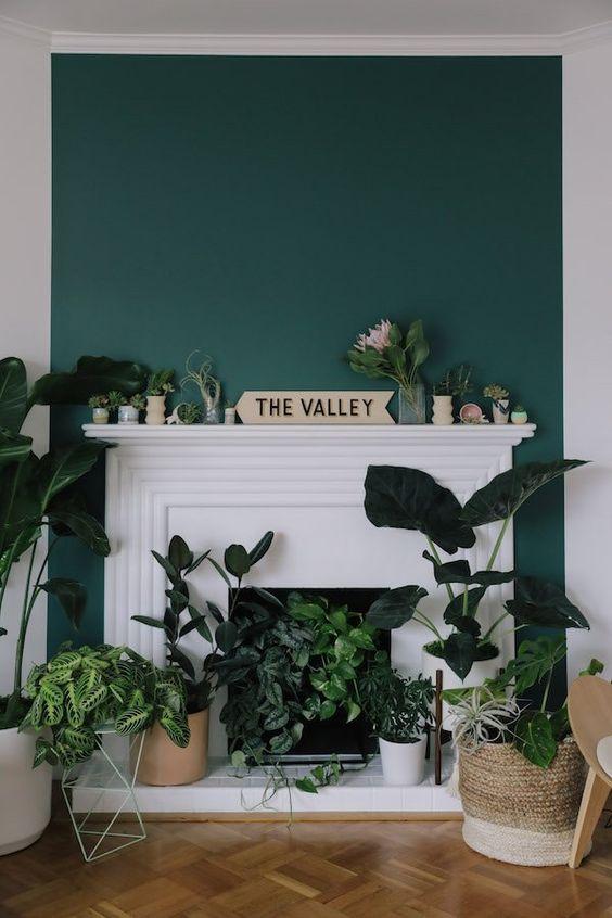 un caminetto bianco non funzionante con una cornice chic e vegetazione in vaso e cactus al suo interno e sulla mensola del camino