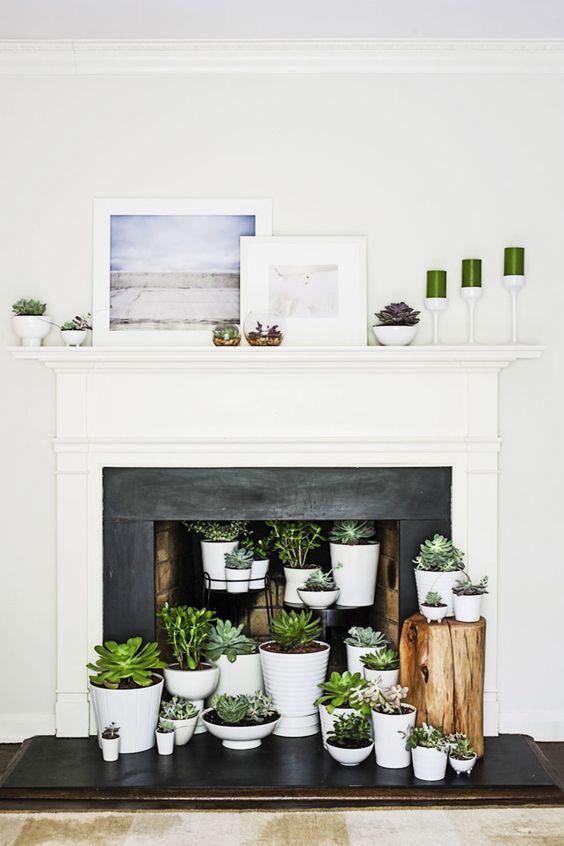 un camino con una mensola bianca e una cornice nera, piante grasse in vaso all'interno e sulla mensola del camino