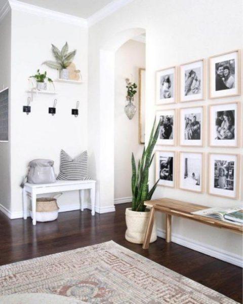 un ingresso moderno chic con un paio di panchine, una galleria a muro, alcune piante e appendiabiti
