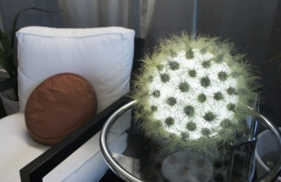 una soffice lampada da tavolo a sfera in verde ricorda un cactus unico sul tuo tavolo è un'idea luminosa fresca e audace