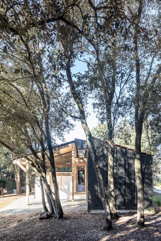La casa è in pura armonia con gli alberi intorno ed è coesa nello spazio