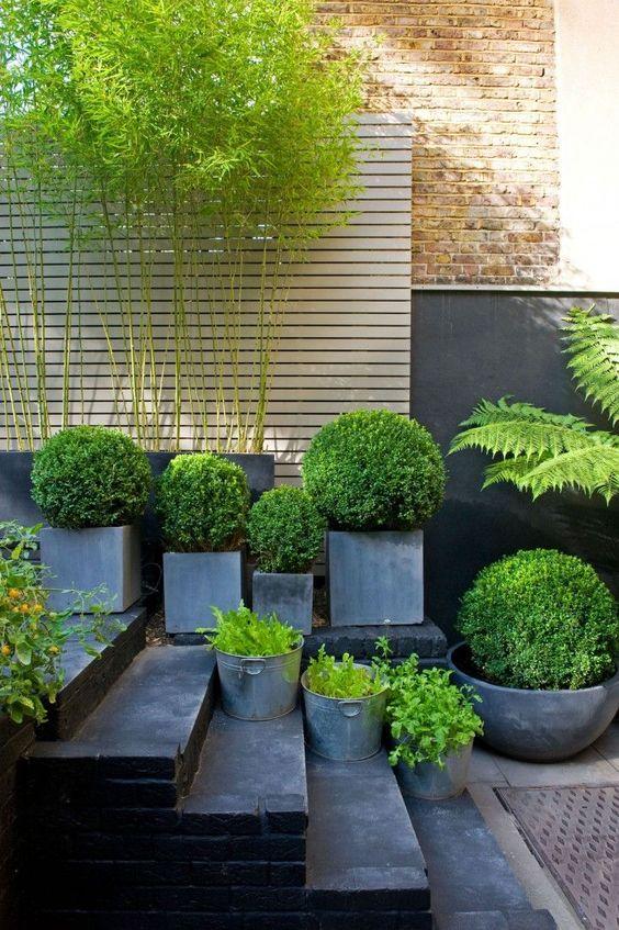 una disposizione di fioriere in cemento quadrati ea forma di coppa di varie dimensioni e altezze sembra molto spigolosa e moderna