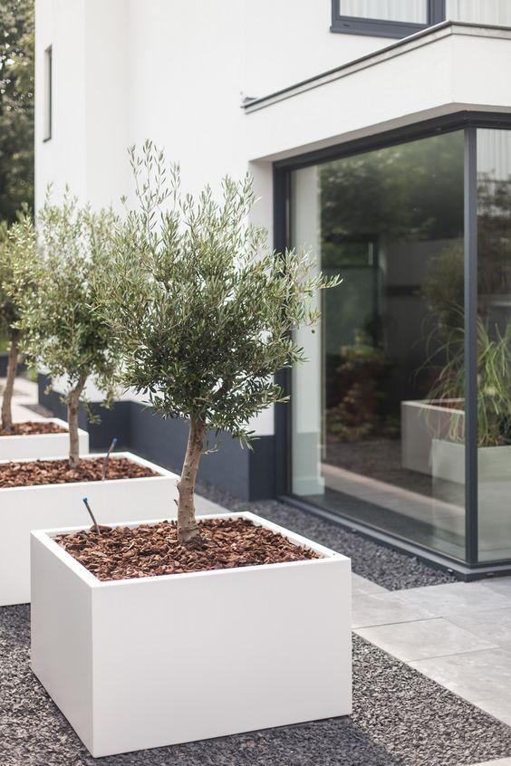 Le fioriere di cemento quadrate bianche di grandi dimensioni in fila renderanno il tuo spazio esterno molto spigoloso e fresco