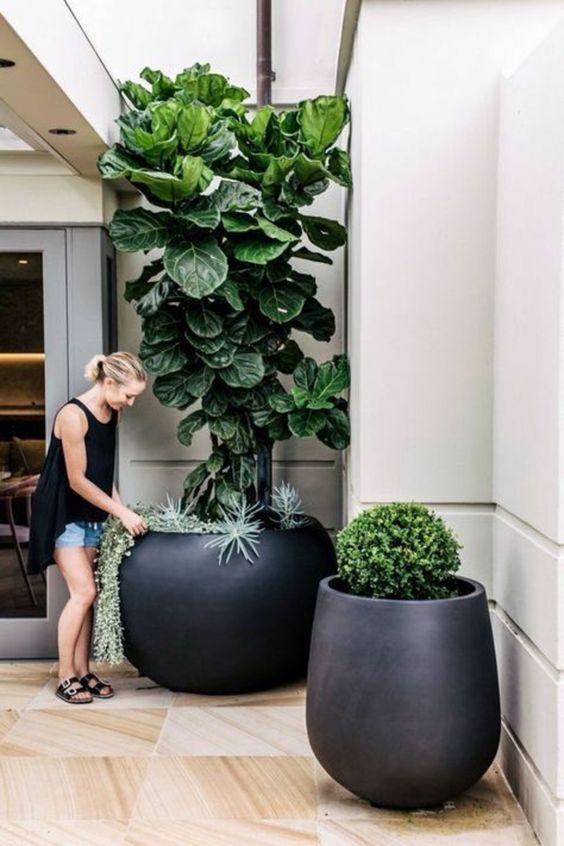 le moderne fioriere arrotondate oversize nere renderanno il tuo spazio esterno molto bello e molto spigoloso