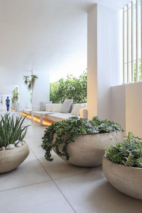fioriere a ciotola di cemento sovradimensionate con ciottoli e vegetazione più piante grasse per un look ultra moderno e audace