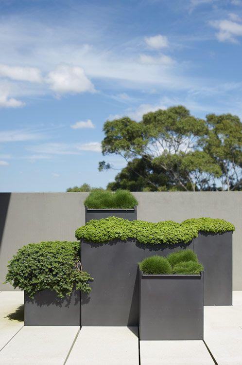 le fioriere quadrate in metallo grigio di varie altezze sembrano molto minimaliste e molto chic allo stesso tempo