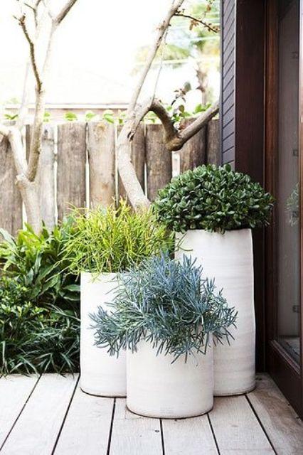 fioriere bianche alte con una leggera consistenza e piante verdi daranno al tuo cortile un'atmosfera moderna e fresca