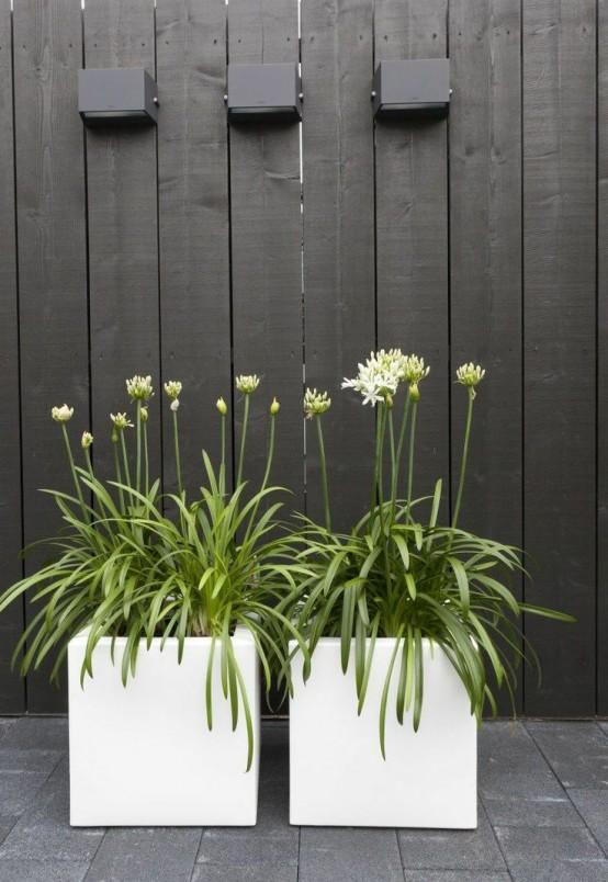 grandi fioriere quadrate bianche con fiori sembrano chic e molto eleganti, rinfrescano qualsiasi spazio esterno