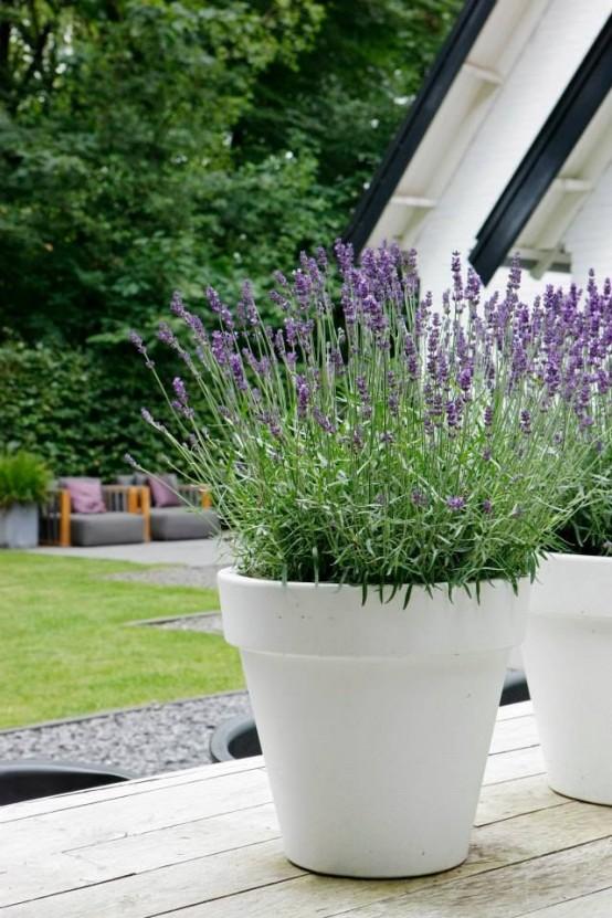 fioriere bianche alte a forma di come al solito quelle con fiori luminosi sembrano fresche e fresche, la forma è tradizionale ma la dimensione è diversa
