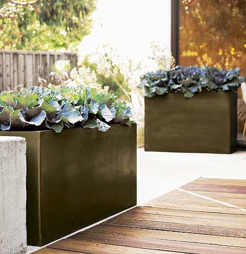 le fioriere in porcellana nera daranno un tocco spigoloso ai tuoi spazi aperti e faranno una dichiarazione con il loro colore