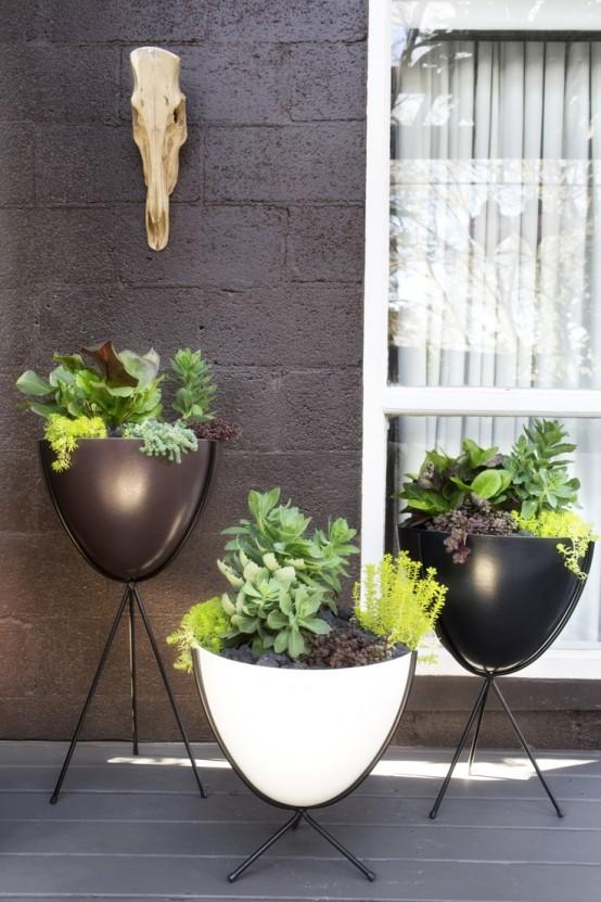 le fioriere in bianco e nero su supporti neri sono una bella soluzione per un cortile moderno o nordico