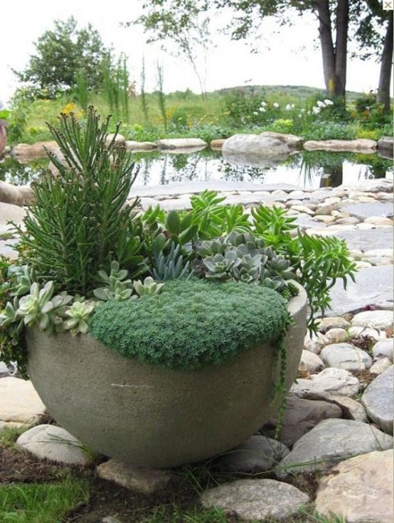 una fioriera in cemento di grandi dimensioni con piante grasse e vegetazione è un pezzo interessante per uno spazio moderno