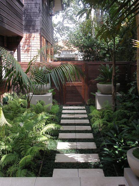 un piccolo e rigoglioso giardino tropicale con tanto verde, felci e piante tropicali in vaso e per terra