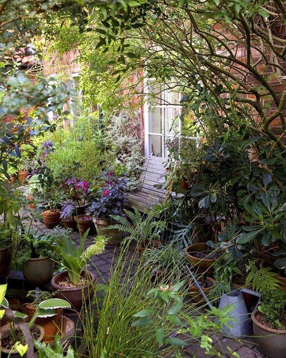 un piccolo giardino luminoso con una panchina di legno, un po 'di verde in vaso e fiori in vaso più alcuni arbusti e alberi