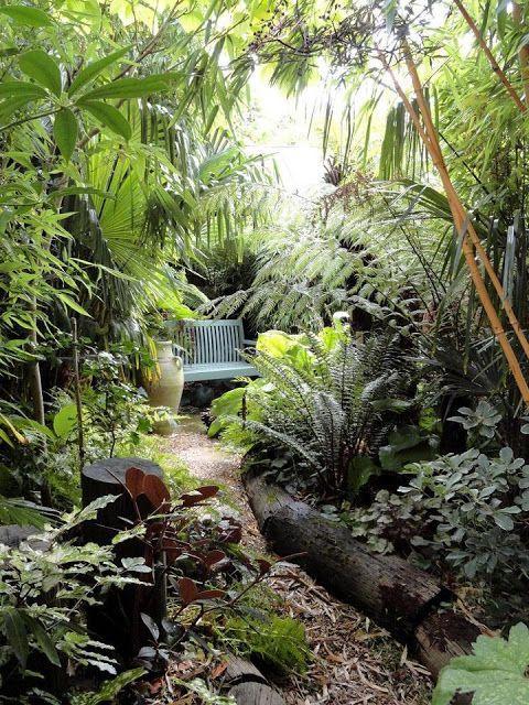 un piccolo angolo giardino lussureggiante con molta vegetazione, arbusti, alcuni alberi e piante tropicali, una panchina blu e un vaso