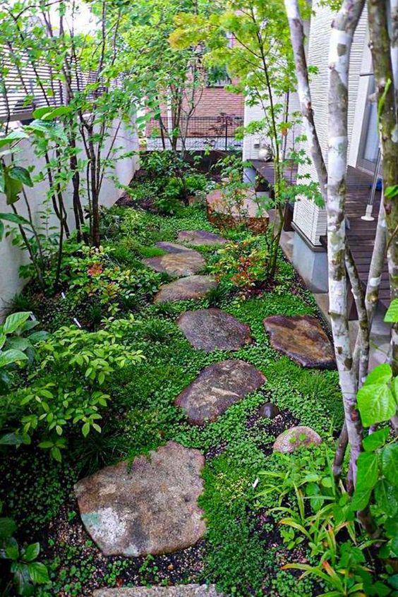 un piccolo giardino di ispirazione giapponese con rocce come marciapiedi, vegetazione, arbusti e un paio di alberi è molto tranquillo