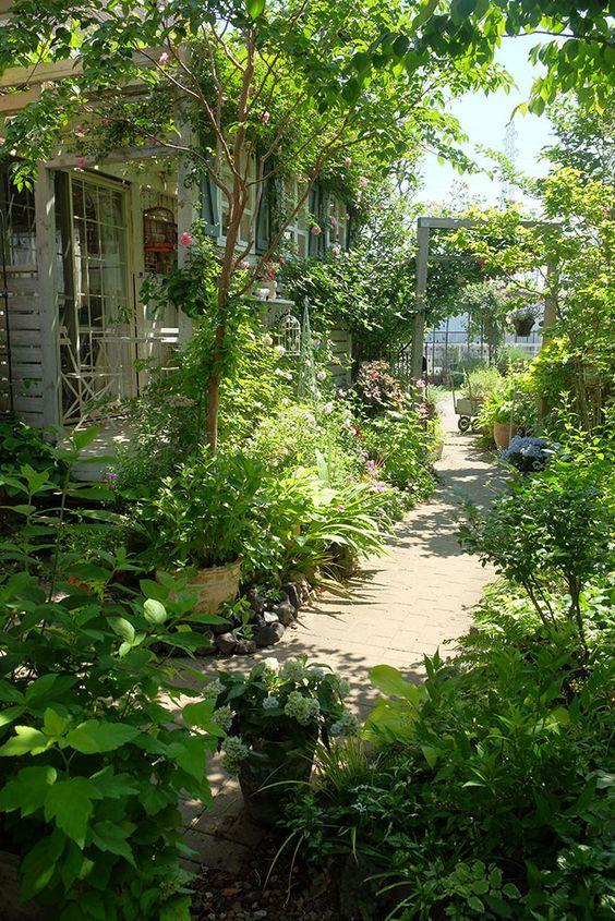 un piccolo giardino con verde, arbusti, fiori, alberelli e piante in vaso più un arco con vegetazione rampicante