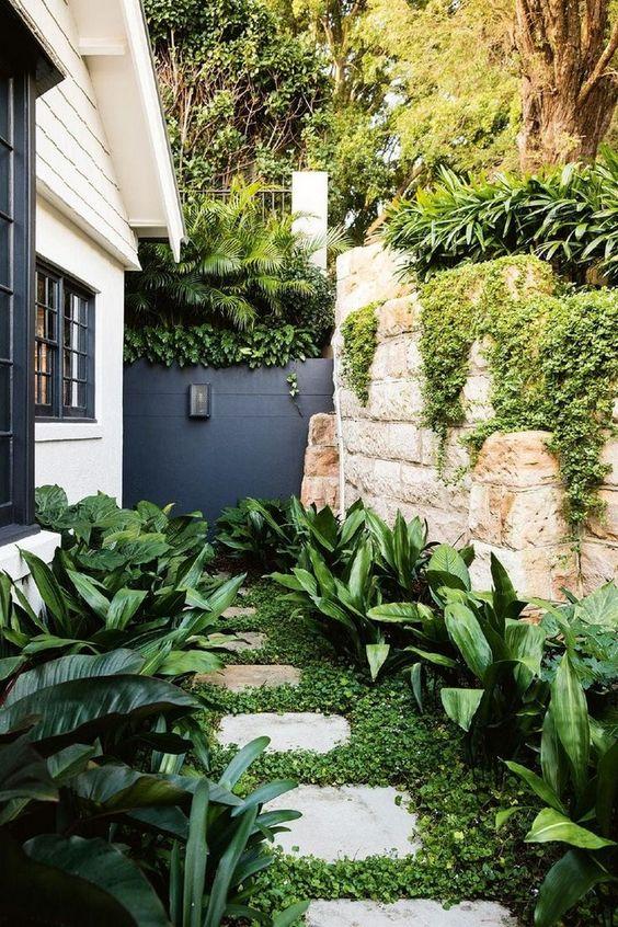 un piccolo angolo giardino moderno con vegetazione, alcuni lussureggianti arbusti tropicali su entrambi i lati del pavimento