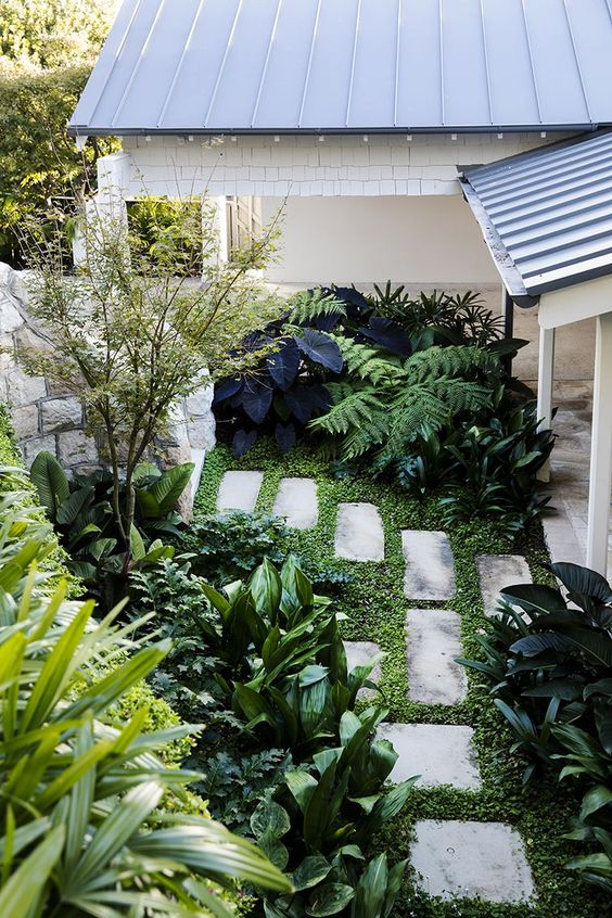 un piccolo angolo giardino con vegetazione, molti arbusti vari e un piccolo albero più pavimentazioni in pietra