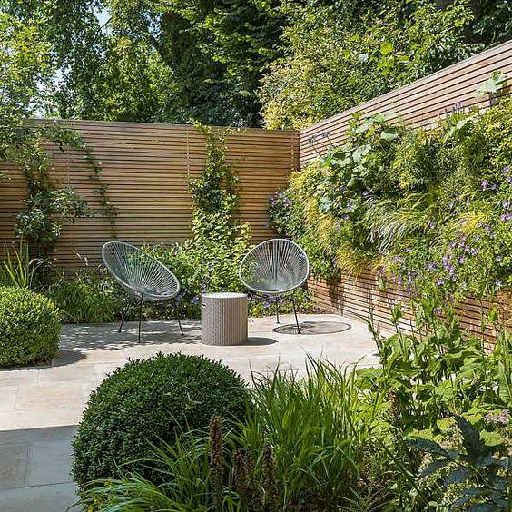 un piccolo giardino moderno con erbe rigogliose, alcuni arbusti e alcune piante rampicanti più un intero muro vivente