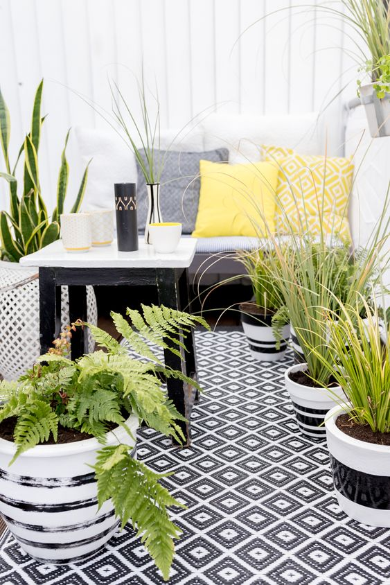 un balcone monocromatico con tessuti stampati, piante in vaso e piante grasse e mobili semplici ed eleganti