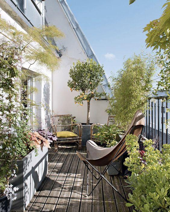 un semplice balcone estivo con piante in vaso e fiori, sedie in rattan e una farfalla in pelle