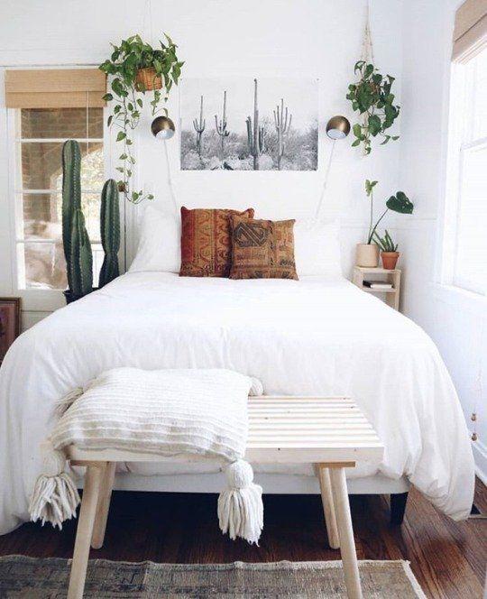 una camera da letto piccola ma ariosa con cactus in vaso e vegetazione in vasi attaccati al muro per una sensazione di freschezza