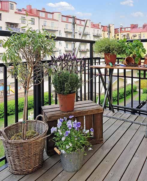 piante in vaso e fiori sono tutto ciò di cui hai bisogno per trasformare il tuo balcone in uno spazio fresco e primaverile