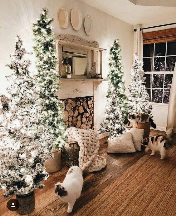un accogliente spazio natalizio con quattro alberi di Natale affollati con luci sembra davvero magico e molto accogliente