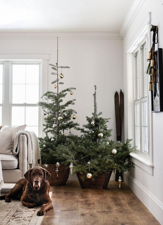 un duo di alberi di Natale in una pentola di legno e un cesto con sopra degli ornamenti natalizi d'argento