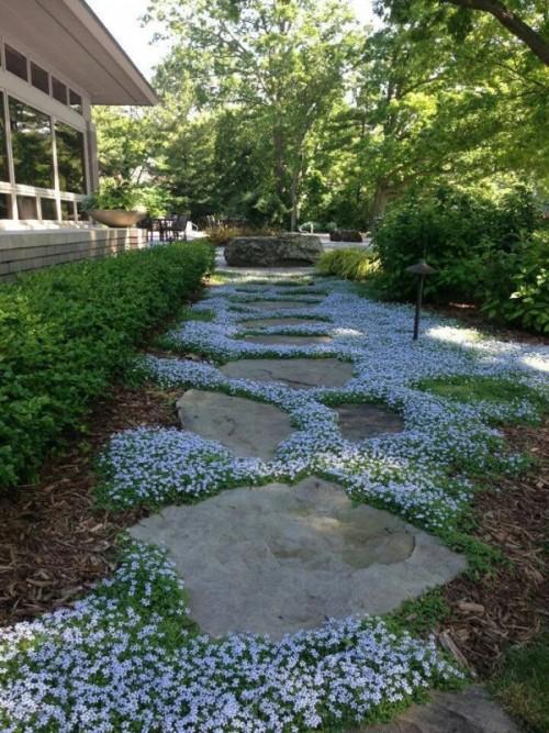 vialetto in pietra con fiori bianchi e vegetazione in mezzo sembra molto chic e molto stimolante