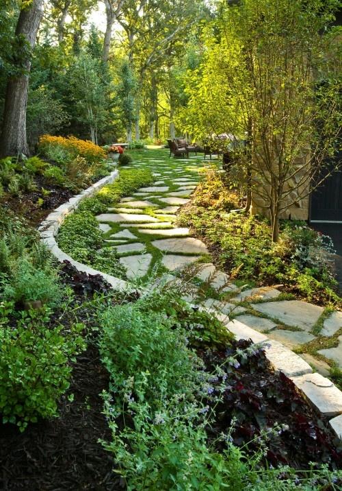 un sentiero irregolare del giardino in pietra con bordi ed erba e vegetazione che crescono tra le pietre del gradino