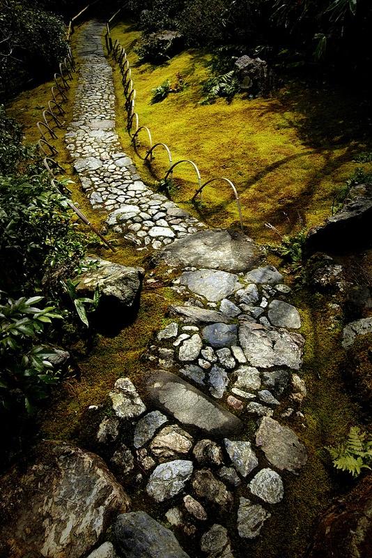 un vecchio e grezzo sentiero del giardino in pietra si abbina al muschio e alla vegetazione intorno e sembra molto vintage