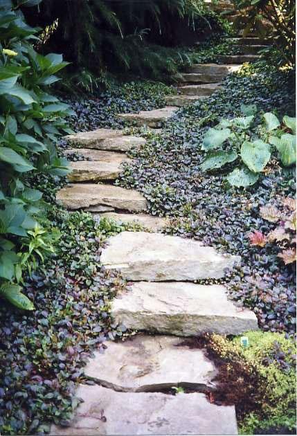 un sentiero di pietra grezza con fogliame scuro accattivante intorno che lo accentua con la sua ombra scura