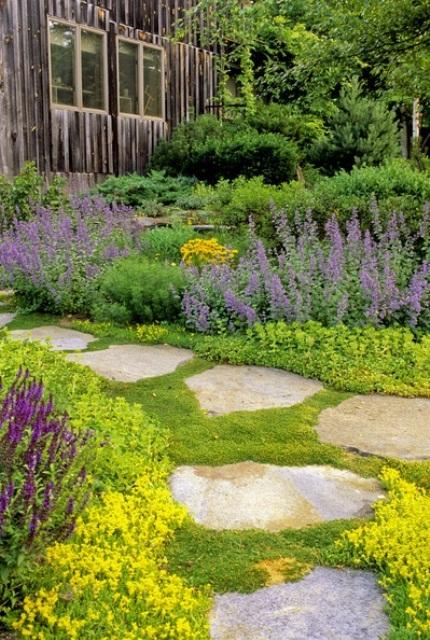 camminamento da giardino in pietra grezza con un ampio spazio tra ogni pezzo e il muschio che cresce per un'atmosfera naturale