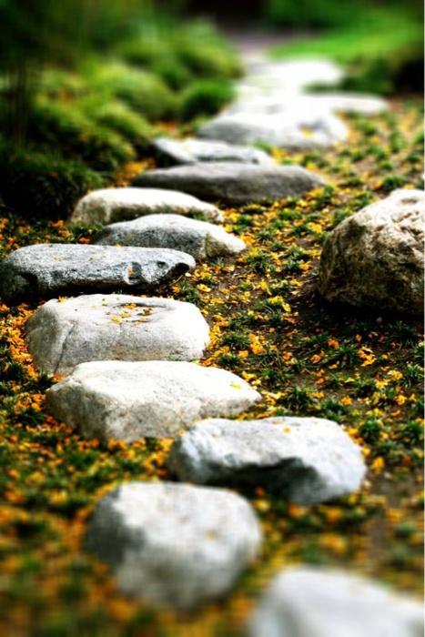 un sentiero ruvido e piccolo giardino in pietra con sabbia intorno è un'idea interessante con un'atmosfera naturale anche se camminarci sopra non è molto comodo