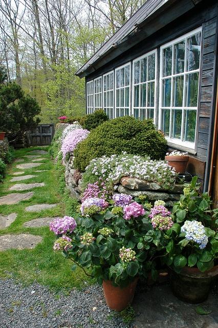 un vialetto giardino rustico e naturale di pietre ed erba che cresce in mezzo più alcuni ciottoli
