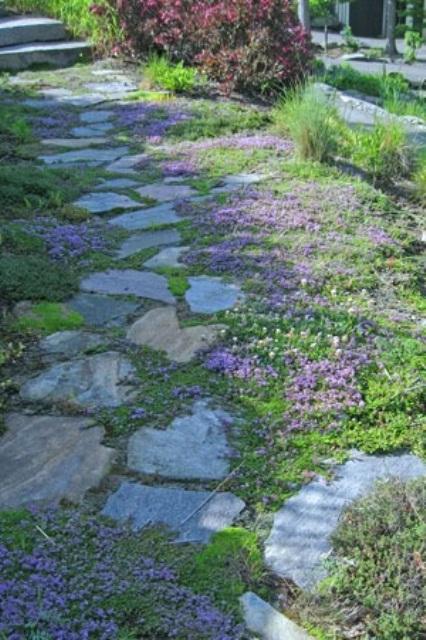 un sentiero in pietra con vegetazione e fiori rosa acceso che crescono nel mezzo, rinfrescano e illuminano il giardino