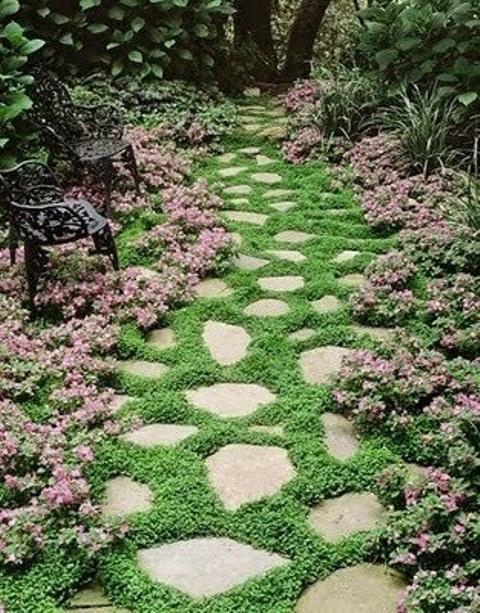 un accattivante sentiero in pietra da giardino con varie forme e vegetazione che cresce nel mezzo, ravviva l'aspetto