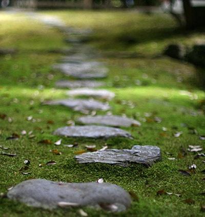 un sentiero del giardino in pietra scura ruvida con muschio intorno sembra calmante, rilassante e fresco