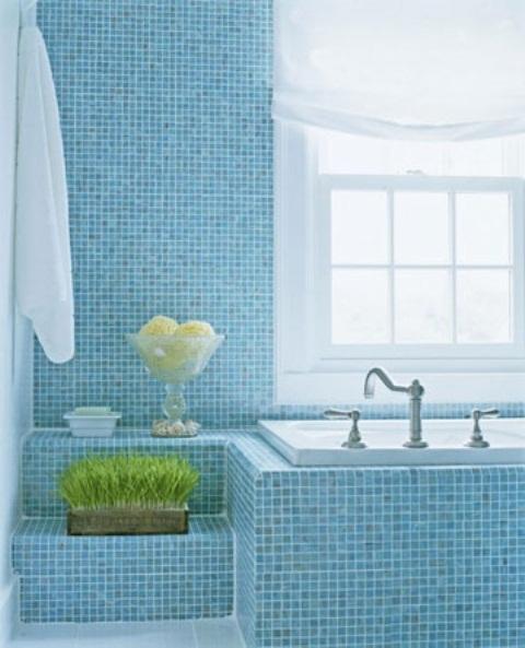 un bagno azzurro con tocchi di bianco, un po 'di verde che cresce e spugne in una ciotola di vetro