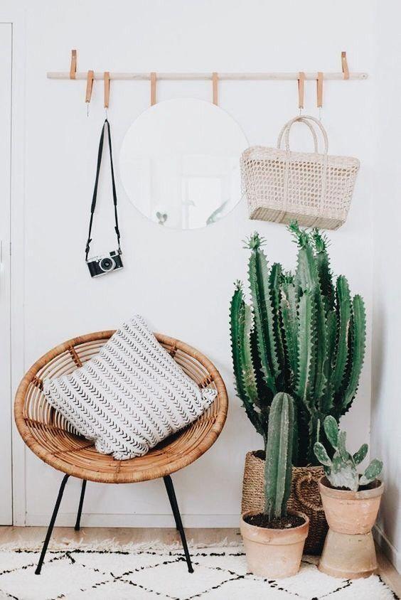i cactus in vaso sono ideali per gli ingressi boho o del deserto, ma non dimenticare che hanno bisogno di un po 'di luce