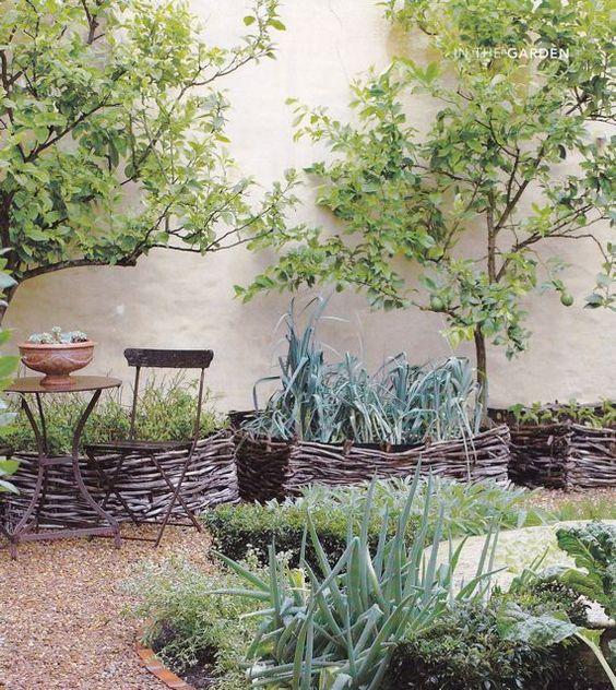 bordi da giardino basket con vari tipi di verde per un giardino chic di ispirazione mediterranea