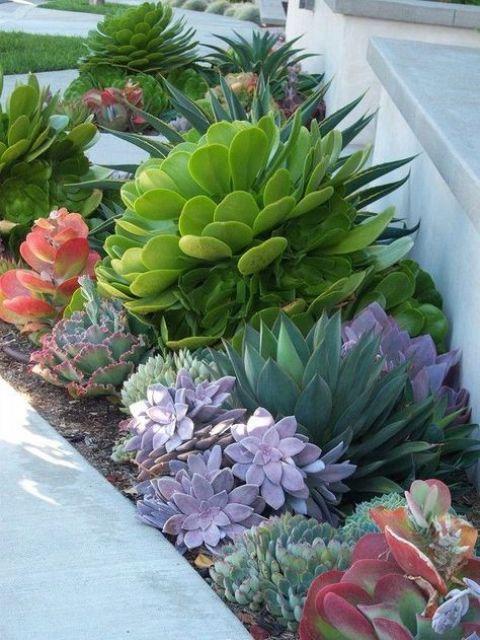 fare una dichiarazione con una grande succulenta in un colore audace, come qui - uno verde audace accentuato con piante grasse viola