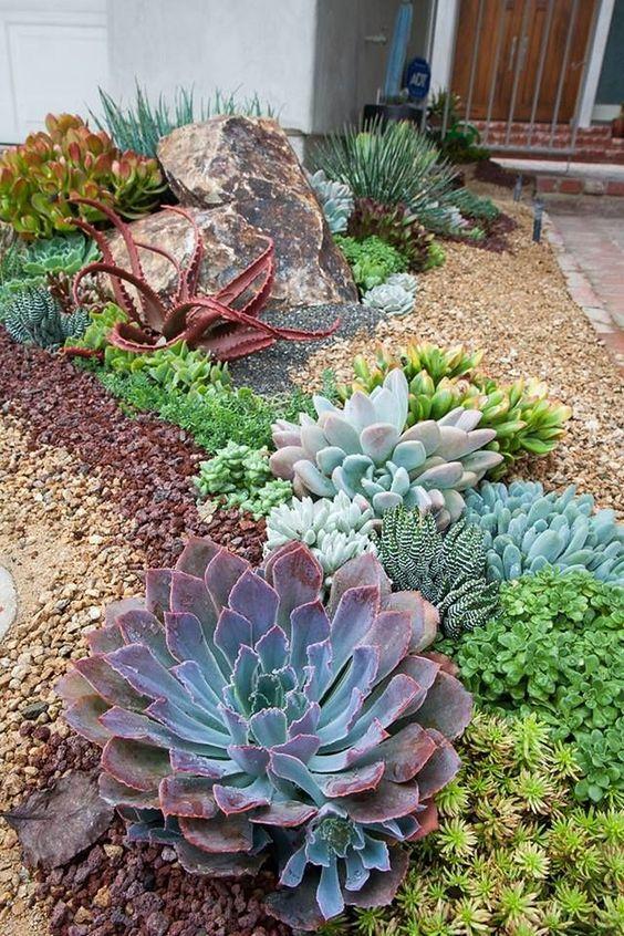 pianta succulente di grandi dimensioni e luminose come centrotavola e culla pezzi più piccoli e più chiari intorno