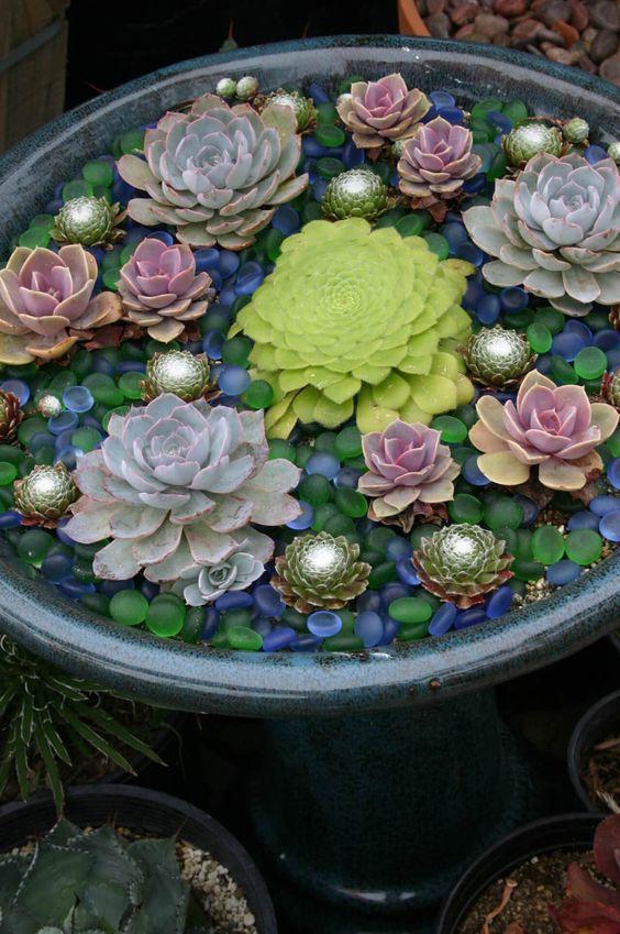 accentua le tue piante grasse nei contenitori con ciottoli di vetro colorati come questi