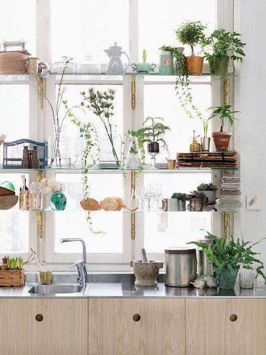 la vegetazione in vaso aggiunge un tocco boho fresco e rilassato alla cucina