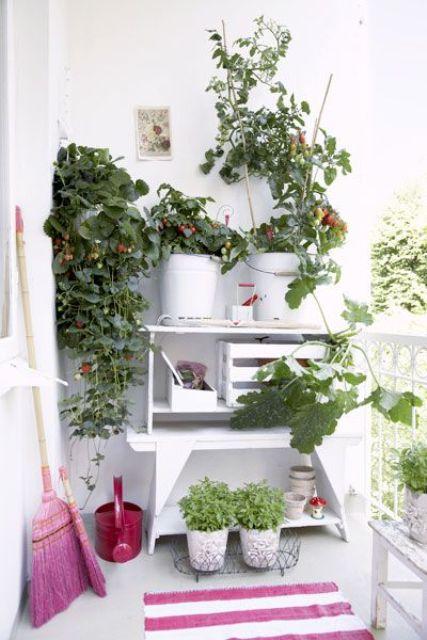 un comodo scaffale bianco con casse e molti vasi con vegetazione e fiori per creare un giardino nel tuo balcone