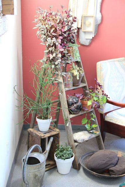 una scala può essere utilizzata per riporre pezzi o decorazioni e quando ne hai bisogno, basta piegarla e portarla via